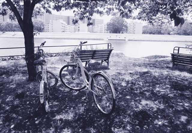 sanpomiti6427.jpg